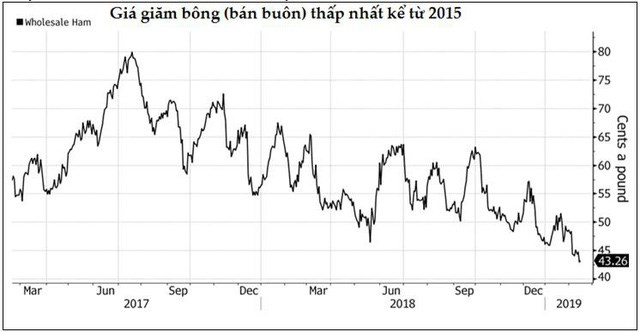 Thị trường ngày 15/2: Giá dầu lên cao nhất kể từ đầu năm, vàng và cao su cũng tăng - Ảnh 1