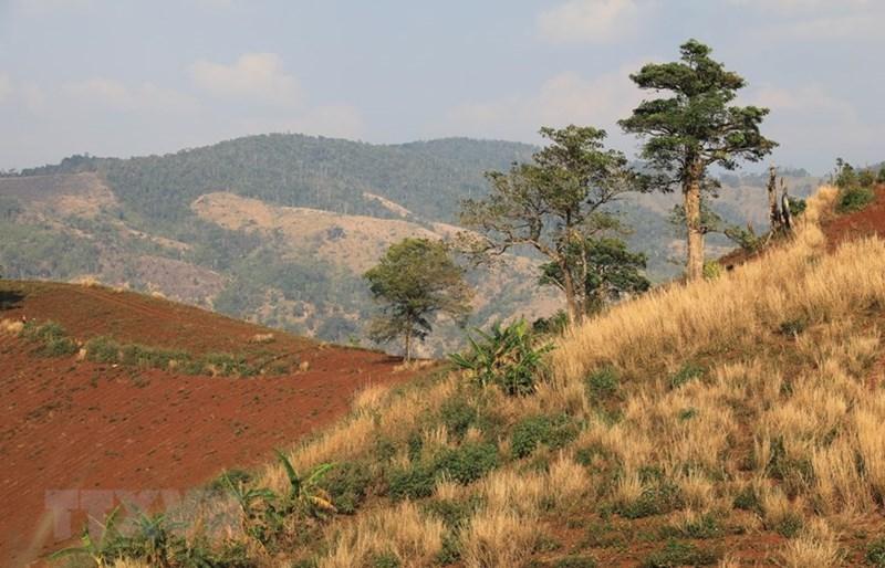 Vẻ đẹp hùng vĩ của núi rừng Gia Lai. (Ảnh: Thành Đạt/TTXVN)