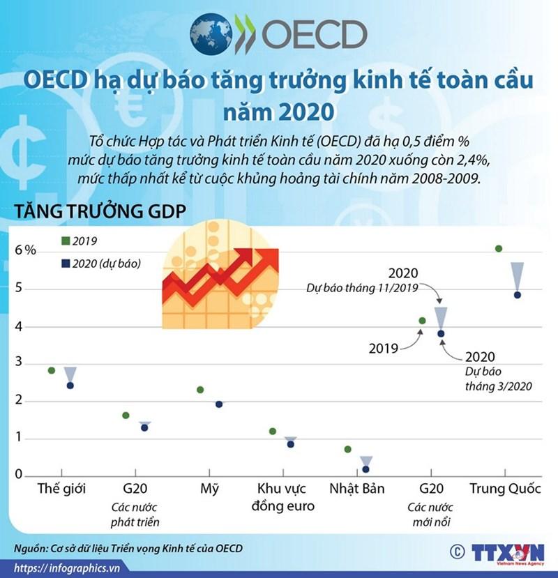 [Infographics] OECD hạ dự báo tăng trưởng kinh tế toàn cầu năm 2020 - Ảnh 1