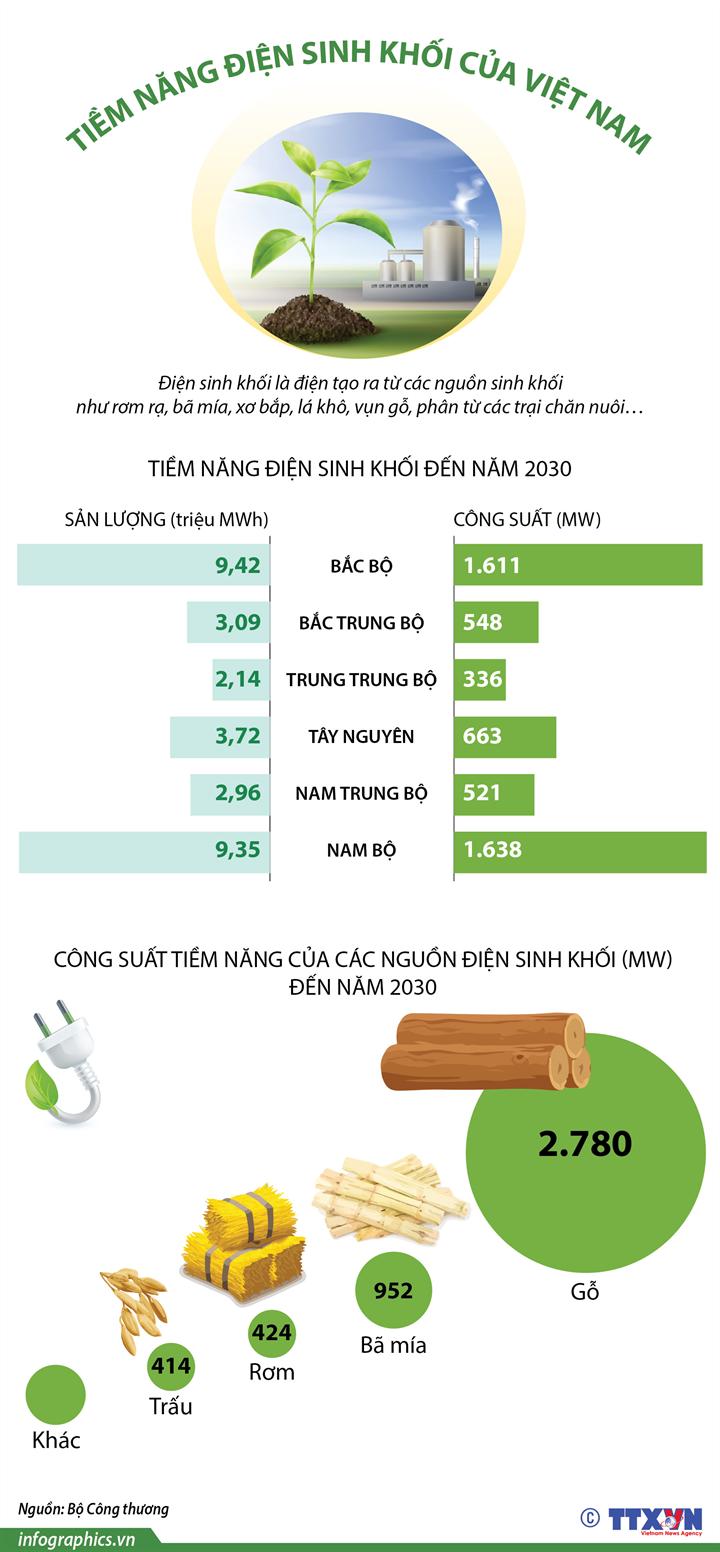 [Infographics] Tiềm năng điện sinh khối của Việt Nam - Ảnh 1