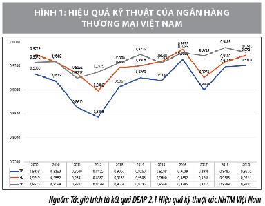 Ước lượng hiệu quả hoạt động ngân hàng thương mại Việt Nam - Ảnh 2