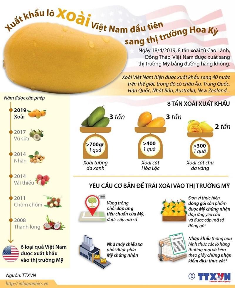 [Infographics] Xuất khẩu lô xoài Việt Nam đầu tiên sang thị trường Mỹ - Ảnh 1
