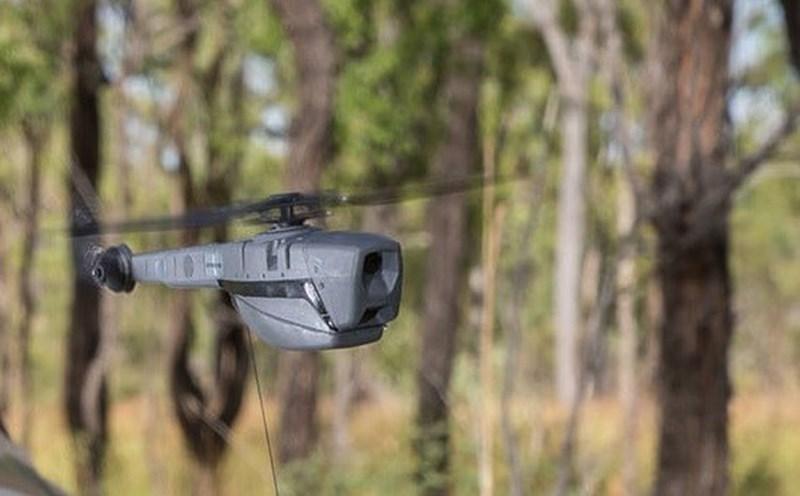 Mỹ hiện là quốc gia đi đầu trong lĩnh vực nghiên cứu và phát triển công nghệ UAV siêu nhỏ làm nhiệm vụ trinh sát. Bên cạnh Mỹ, các quốc gia cũng áp dụng công nghệ này thành công là Israel, Pháp, Đức và Trung Quốc.