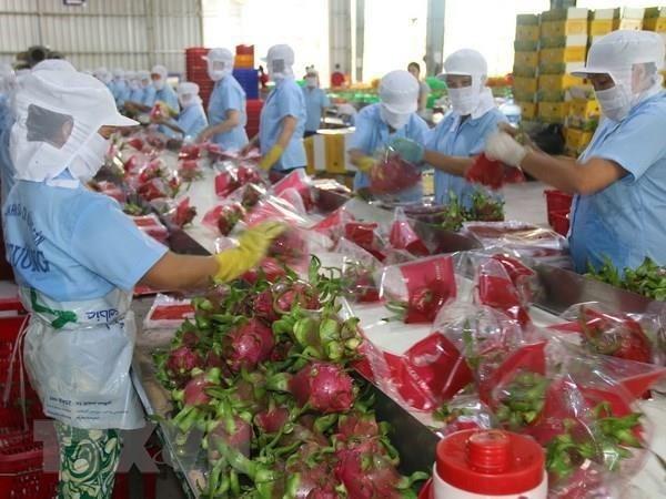 Sản phẩm nông lâm thủy sản Việt được mở rộng trên 180 thị trường - Ảnh 1
