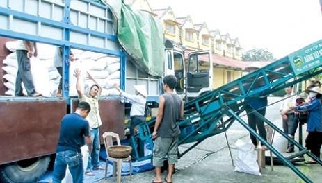 Cán bộ, đoàn viên công đoàn Cục DTNN khu vực Thái Bình luôn gương mẫu trong thực hiện nhiệm vụ chuyên môn.