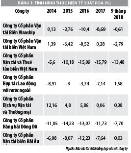 Thực trạng tài chính các công ty vận tải biển thuộc Tổng công ty hàng hải Việt Nam - Ảnh 1