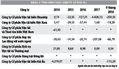 Thực trạng tài chính các công ty vận tải biển thuộc Tổng công ty hàng hải Việt Nam - Ảnh 2