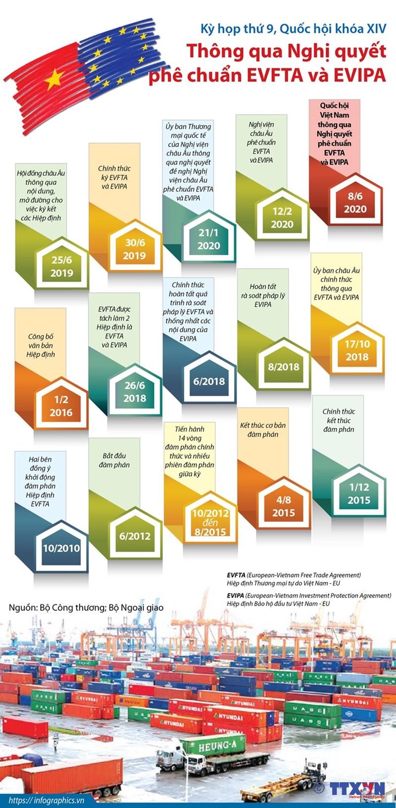 [Infographics] Quốc hội thông qua Nghị quyết phê chuẩn EVFTA và EVIPA - Ảnh 1