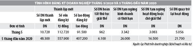 Số liệu đăng ký doanh nghiệp và thu hút đầu tư trực tiếp nước ngoài vào Việt Nam tháng 5/2020 - Ảnh 1