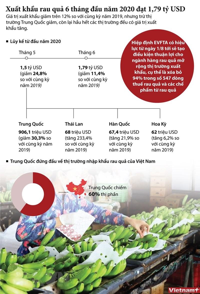 [Infographics] Xuất khẩu rau quả 6 tháng đầu năm 2020 đạt 1,79 tỷ USD - Ảnh 1