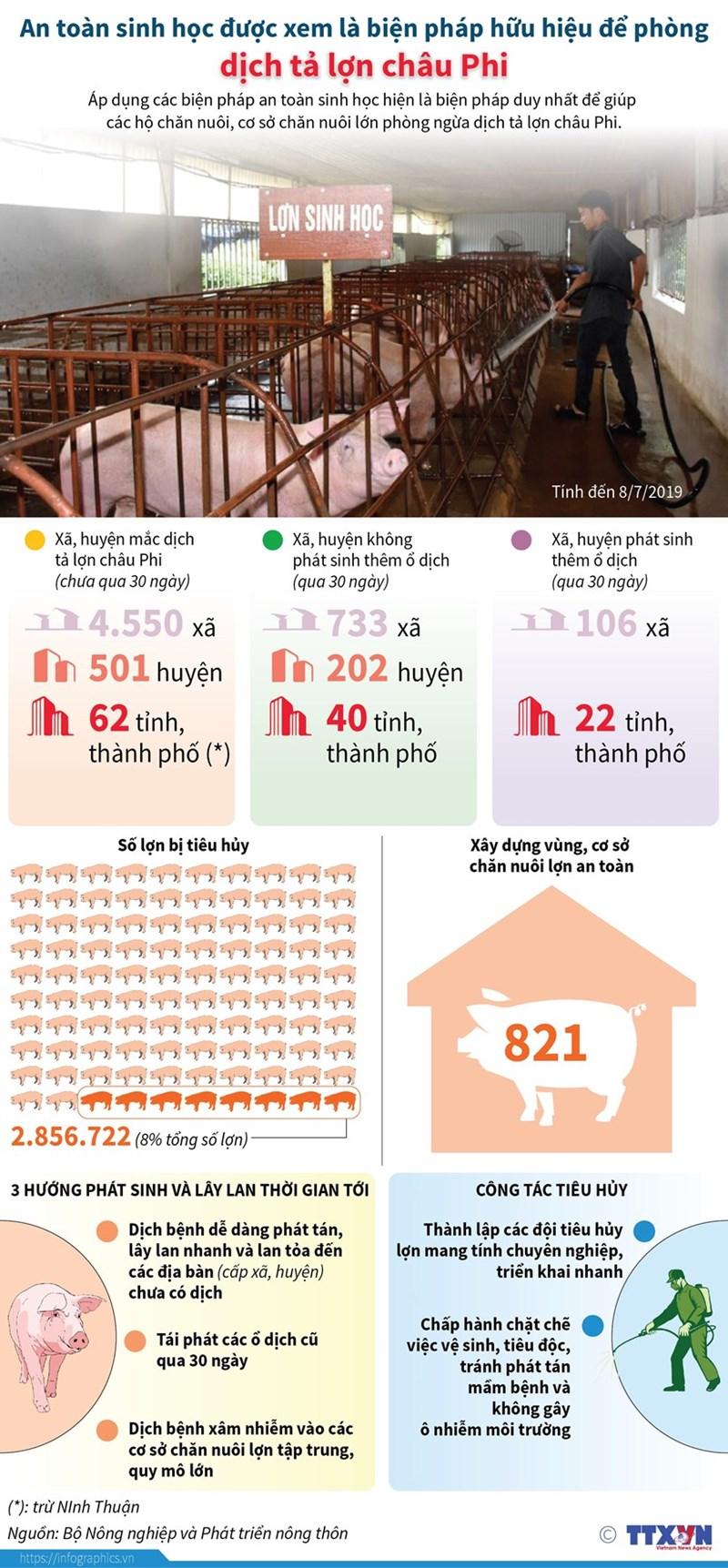 [Infographics] An toàn sinh học là biện pháp hữu hiệu để phòng dịch tả lợn châu Phi - Ảnh 1