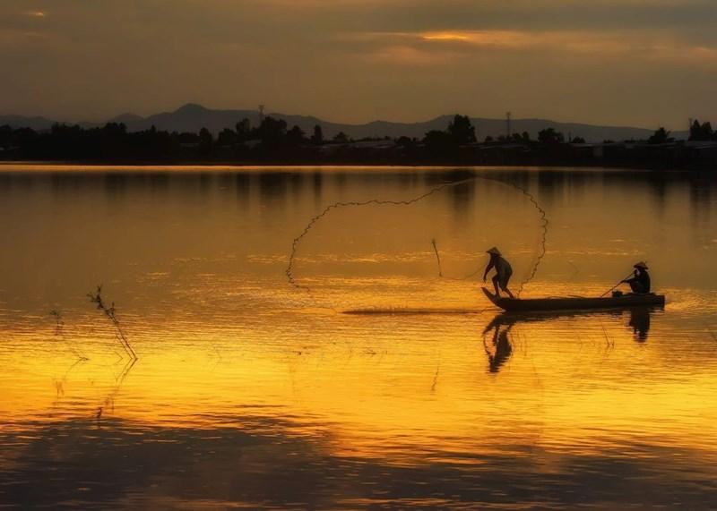 Ngư dân quăng chài đánh bắt cá trên cánh đồng Châu Đốc, An Giang.