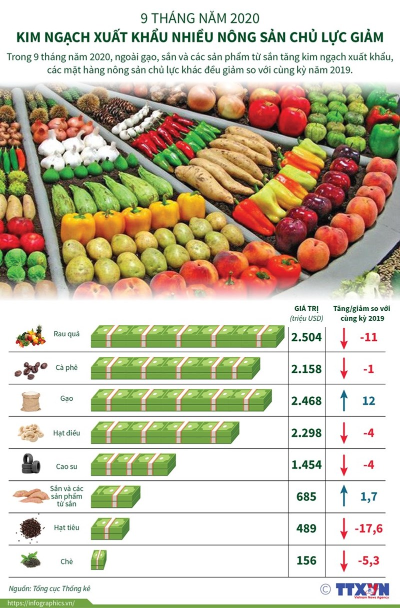[Infographics] Kim ngạch xuất khẩu nhiều nông sản chủ lực giảm - Ảnh 1