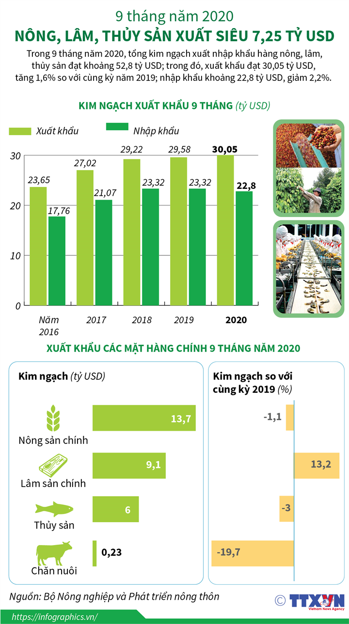 [Infographics] 9 tháng năm 2020: Nông, lâm, thủy sản xuất siêu 7,25 tỷ USD - Ảnh 1