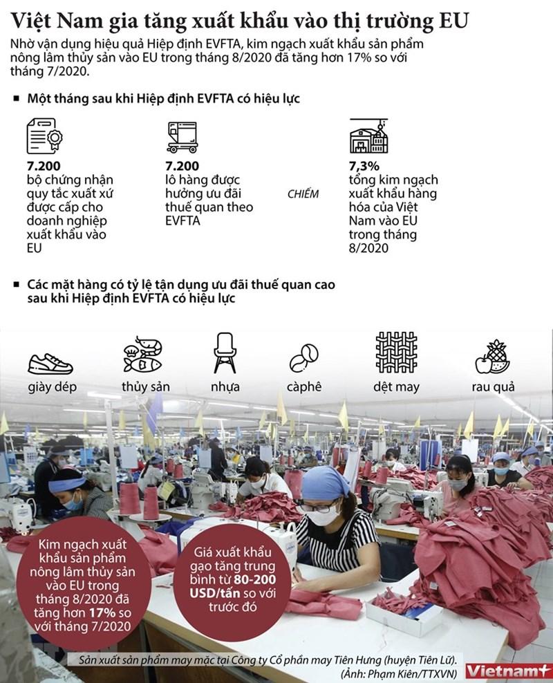 [Infographics] Việt Nam gia tăng xuất khẩu vào thị trường EU - Ảnh 1