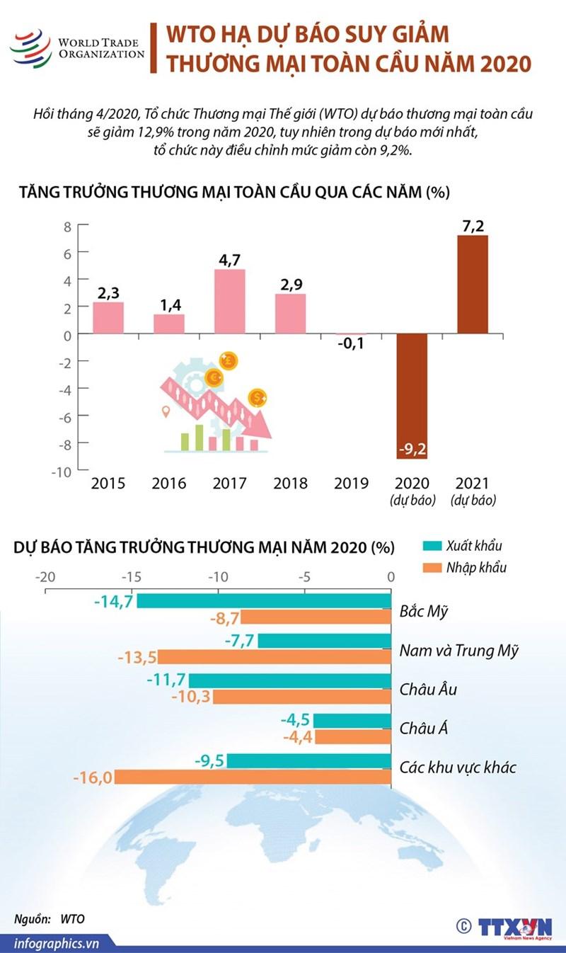 [Infographics] WTO hạ dự báo suy giảm thương mại toàn cầu năm 2020 - Ảnh 1