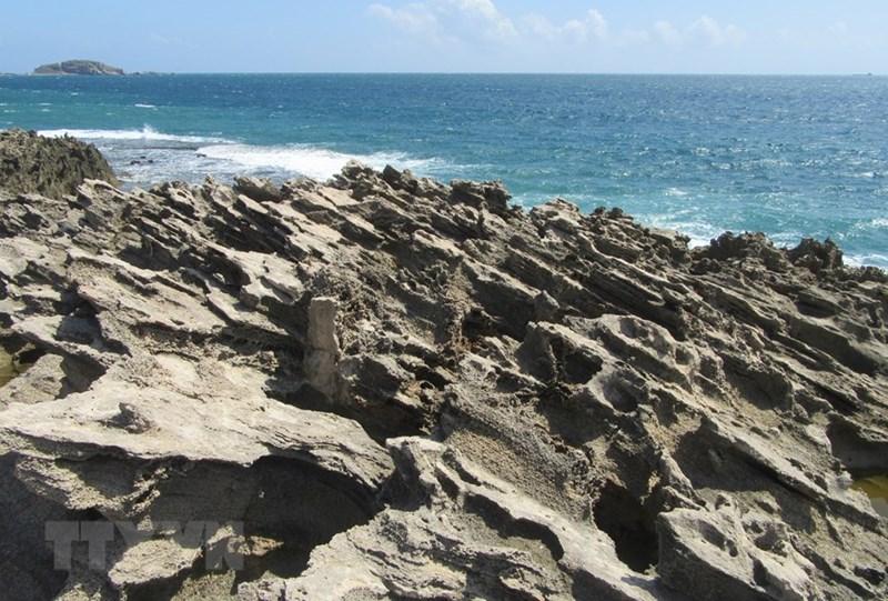 Rạn san hô cổ hóa thạch do sóng biển bào mòn tạo thành nhiều hình dáng lạ mắt