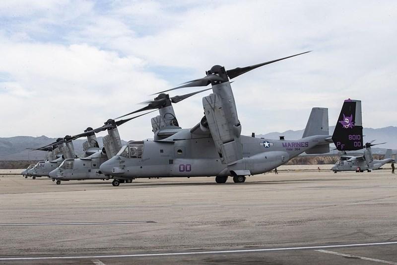 """Hiện tại ngoài Mỹ sử dụng cho Thủy quân lục chiến, Nhật Bản cũng đang đặt loại """"Chim ưng"""