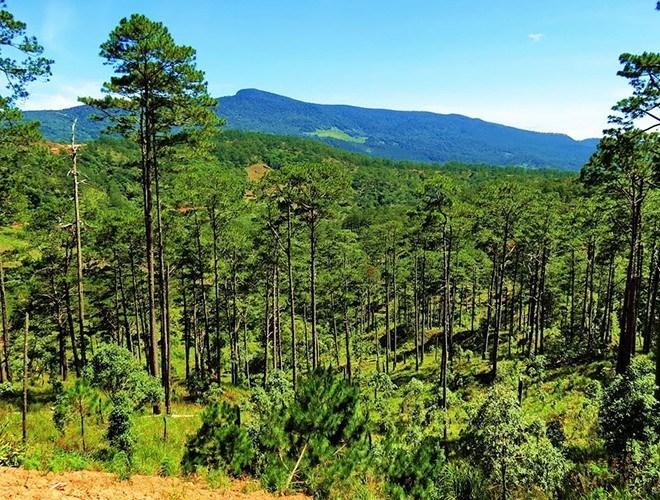 Nơi đây có diện tích 63.938 ha, là nơi tập hợp phong phú nguồn tài nguyên thiên nhiên, cảnh quan đẹp cùng với đó là sự đa dạng sinh học