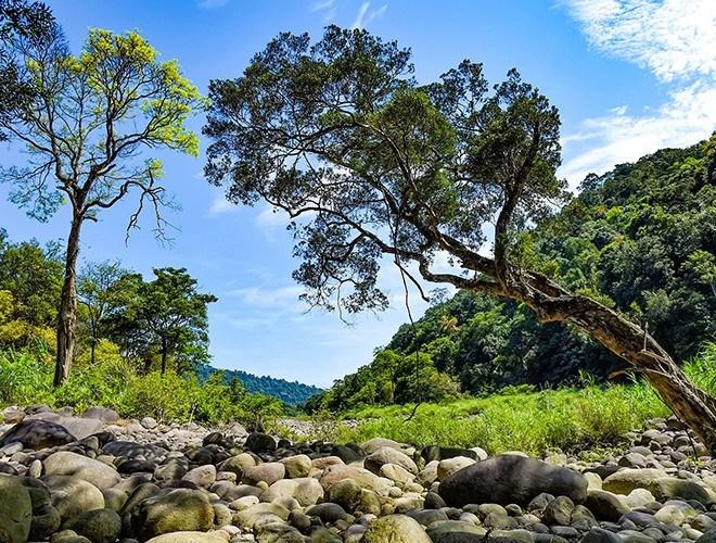 Vườn quốc gia Vũ Quang không chỉ là nơi có nhiều loài sinh vật đặc hữu chỉ có ở Việt Nam mà còn dần trở thành địa chỉ du lịch sinh thái hấp dẫn tại Hà Tĩnh. Du khách tới đây sẽ được trải nghiệm, khám phá những điều bí ẩn của thiên nhiên