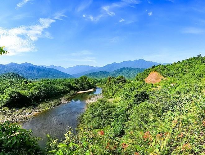 Vườn quốc gia Vũ Quang có tính đa dạng sinh học cao. 1.612 loài thực vật bậc cao thuộc 191 họ và 676 chi, trong đó có 94 loài thực vật có tên trong Sách Đỏ Việt Nam