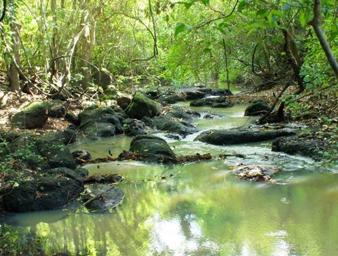 Vườn được chia thành ba phân khu: Khu bảo vệ 8.179 ha, phân khu phục hồi sinh thái khoảng 10.852 ha, phân khu hành chính dịch vụ 125 ha