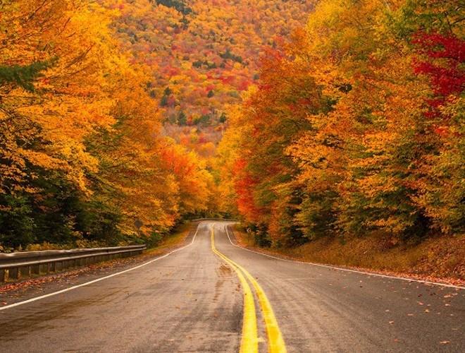 Cảm giác như lạc giữa cổ tích ở cao tốc Kancamagus bởi sắc màu của lá