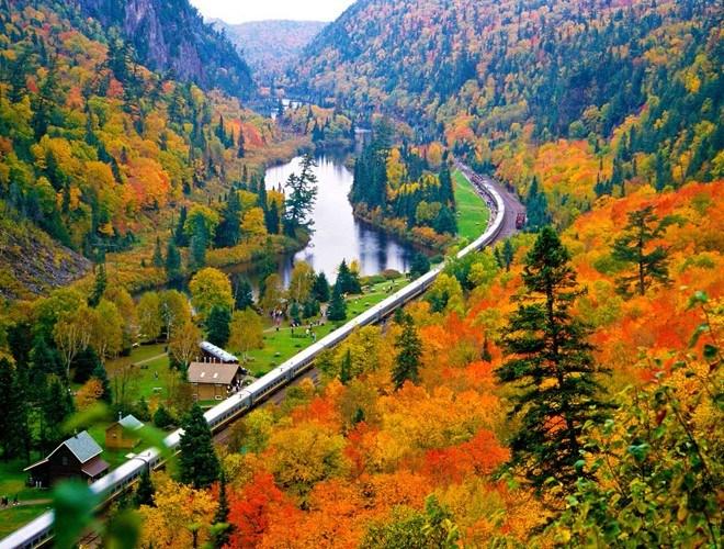 Vào mùa thu, hàng cây hai bên đường sẽ đổi màu, tạo nên khung cảnh lãng mạn, thơ mộng