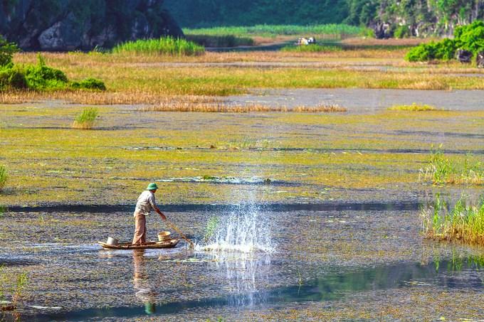 Không chỉ là khu bảo tồn thiên nhiên ngập nước nổi tiếng trên bản đồ du lịch Ninh Bình, đầm Vân Long còn có nhiều cảnh quan và di tích văn hóa. Đầm nước này sở hữu 2 kỷ lục Việt Nam, gồm