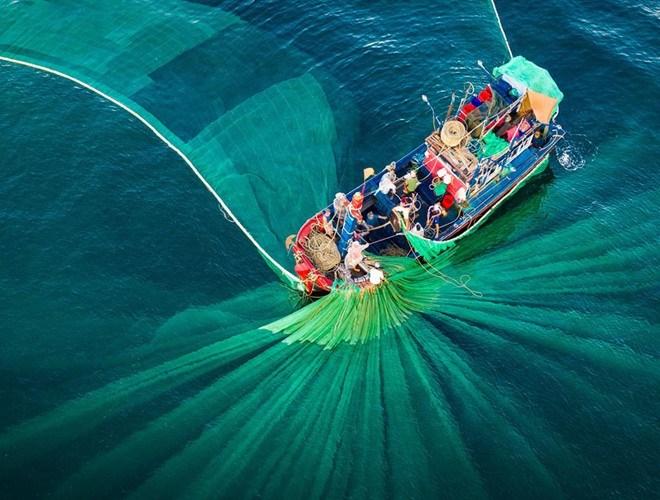 """Tác phẩm """"Vũ điệu của lưới"""" do tác giả Nguyễn Ngọc Thiện chụp tại Hòn Yến (Tuy An, Phú Yên). Bức ảnh vào top 41 thể loại Kiến trúc và Môi trường xây dựng"""