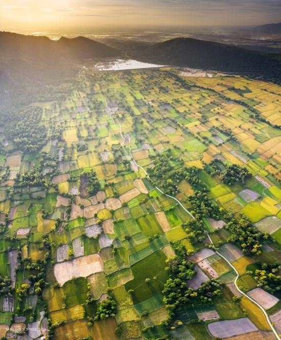 """Bức ảnh """"Mùa vàng Tà Pạ"""" ghi lại vẻ đẹp mùa lúa chín trên cánh đồng Tà Pạ, huyện Tri Tôn, tỉnh An Giang. Đây là một trong những điểm du lịch nổi tiếng nhất ở An Giang, thu hút khách du lịch và các tay máy đến săn ảnh, nhất là mùa lúa chín vào tháng 8 và tháng 11 hàng năm."""