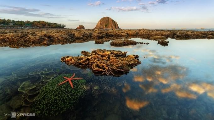 """Tác phẩm """"Rạn san hô ở Hòn Yến"""". """"Khi thủy triều rút, san hô có thể lộ hoàn toàn lên mặt nước. Đây là nơi chụp ảnh nối tiếng trong giới nhiếp ảnh, nhưng cũng là nơi cần được bảo tồn cấp thiết để bảo vệ giá trị đa dạng sinh học ven biển tại khu vực này, do đó cần lưu ý khi chụp ảnh tránh giẫm đạp lên các rạn san hô"""", anh Nhân chia sẻ."""