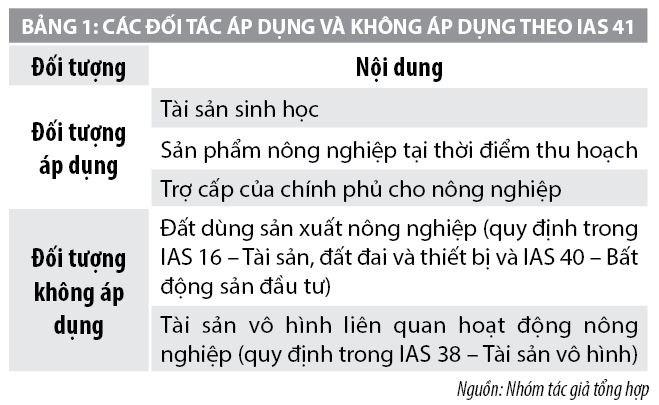 Kế toán tài sản sinh học theo chuẩn mực kế toán quốc tế tại Việt Nam - Ảnh 1