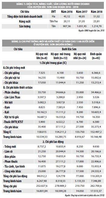 Đánh giá hiệu quả kinh tế của cây bưởi tại huyện Bắc Sơn, tỉnh Lạng Sơn - Ảnh 1