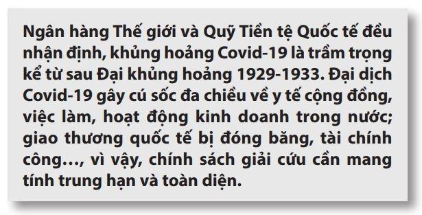 Gợi ý chính sách hỗ trợ phát triển kinh tế Việt Nam hậu Covid-19  - Ảnh 3