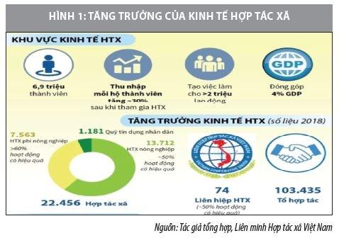 Phát triển kinh tế hợp tác xã Việt Nam trong bối cảnh mới - Ảnh 1