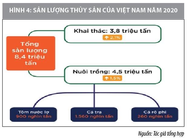 Cơ hội và thách thức của chuỗi cung ứng thủy sản Việt Nam trong bối cảnh đại dịch covid-19  - Ảnh 4