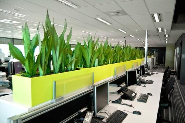 Những yếu tố cần lưu ý khi thiết kế văn phòng xanh - Ảnh 2