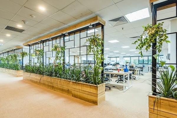 Những yếu tố cần lưu ý khi thiết kế văn phòng xanh - Ảnh 5
