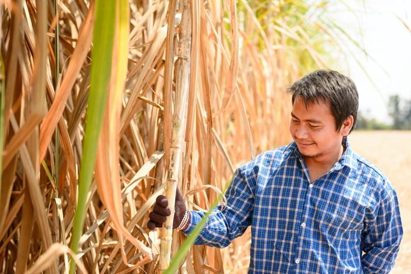 Nông dân lẫn doanh nghiệp Việt Nam đều đang mong muốn bảo vệ quyền và lợi ích chính đáng của mình bằng các biện pháp PVTM và ngăn chặn đường lậu.