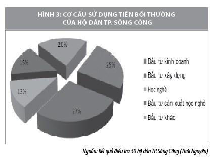 Ảnh hưởng của sự phát triển đô thị hóa tới người dân TP. Sông Công, tỉnh Thái Nguyên - Ảnh 3