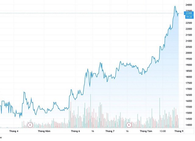 Biến động giá cổ phiếu CRE từ tháng 3/2020 đến 31/8/2020.