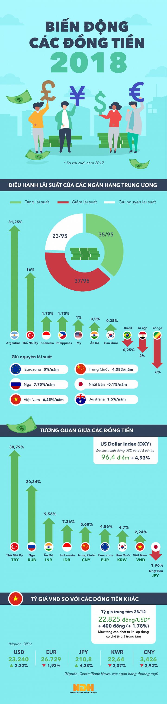 [Infographic] Các đồng tiền năm 2018 biến động như thế nào? - Ảnh 1