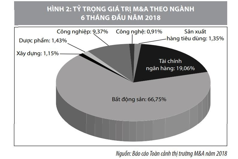 Triển vọng hoạt động mua bán và sáp nhập doanh nghiệp tại Việt Nam - Ảnh 2