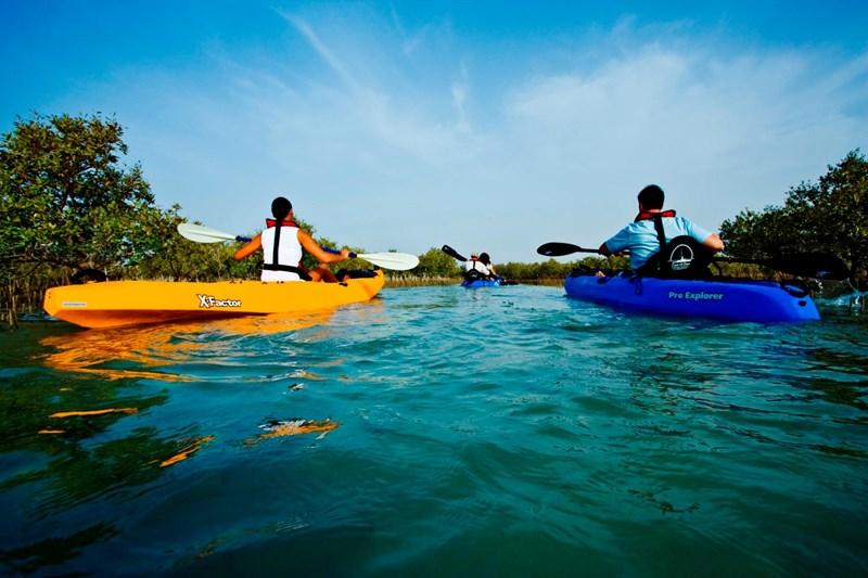 Tuy vậy chèo thuyền kayak giữa rừng đước bên bờ biển lại cho những trải nghiệm hết sức thú vị.