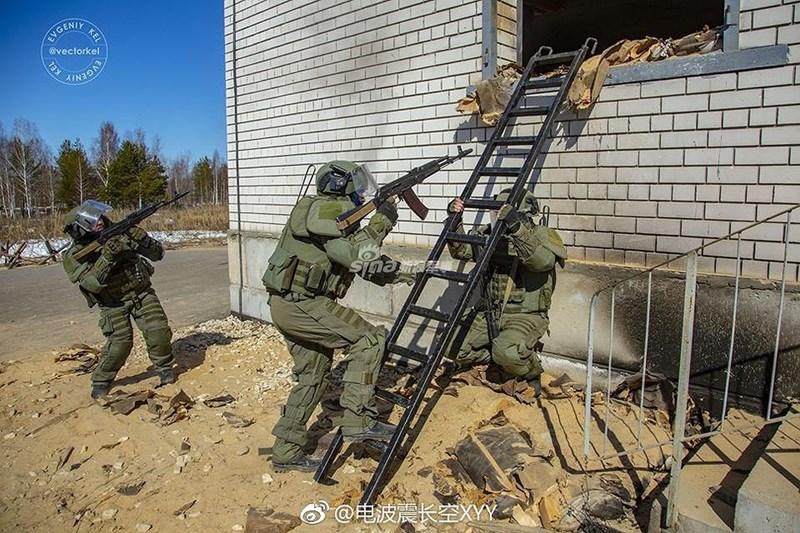 Cùng với đặc điểm như đã nêu ở trên khiến phần lớn ý kiến đều cho rằng đây chính là các binh chủng tinh nhuệ bậc nhất của lực lượng vũ trang Nga.