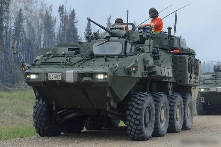 LAV 6.0 là phiên bản nâng cấp của xe LAV III Kodiak. Các nâng cấp dựa trên thực tế chiến đấu của lục quân Canada.