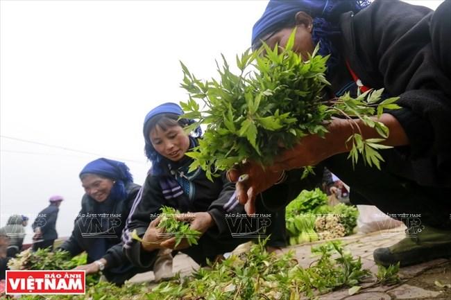 Chợ YTý cũng nổi tiếng là nơi bán những cây lá làm thuốc dân gian của người Hà Nhì.