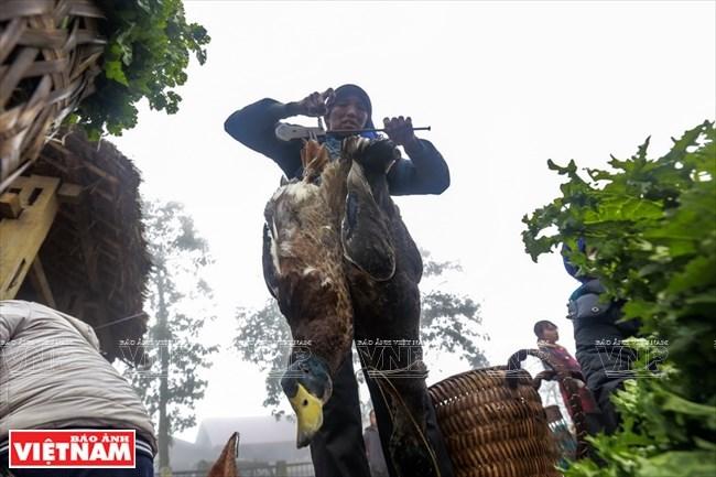 Những chú vịt đặc sản người Hà Nhì đen nuôi được bán tại chợ Y Tý.