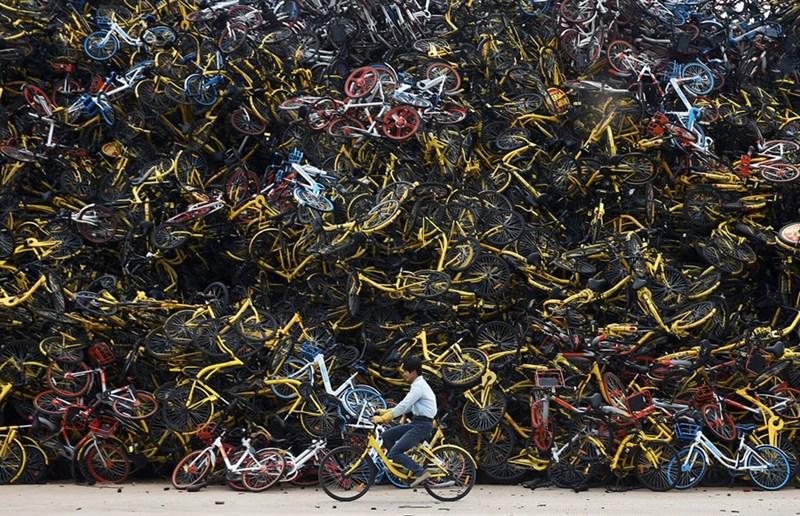Núi xe đạp bỏ đi ở Hạ Môn, Phúc Kiến, Trung Quốc.